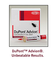 Advion Cockroach Gel Bait is shown very effective in killing cockroaches of all species