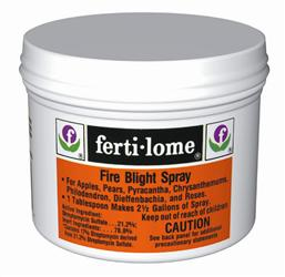 Image Result For Natural Termite Killer