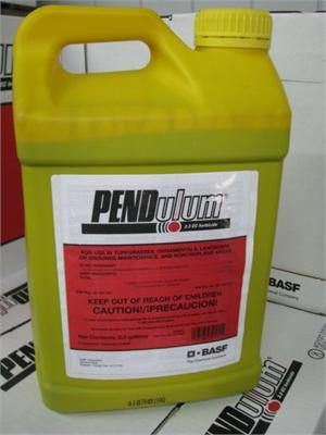 Pendulum 3.3 Herbicide is shown in a yellow jug