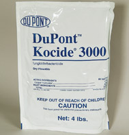 Kocide 3000 is a powerful bacteriacide and fungicide from the folks at Dupont