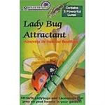 Lady Bug Attractant