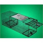 The medium sized humane way live animal trap you see here is perfect for small raccoons and more!