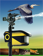 Motion Activated Bird Scarecrow Sprinkler