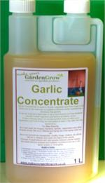 Garlic Concentrate